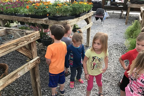 Preschool visiting the greenhouse